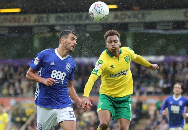 Norwich vs Birmingham Free Betting Tips 18.01.2019
